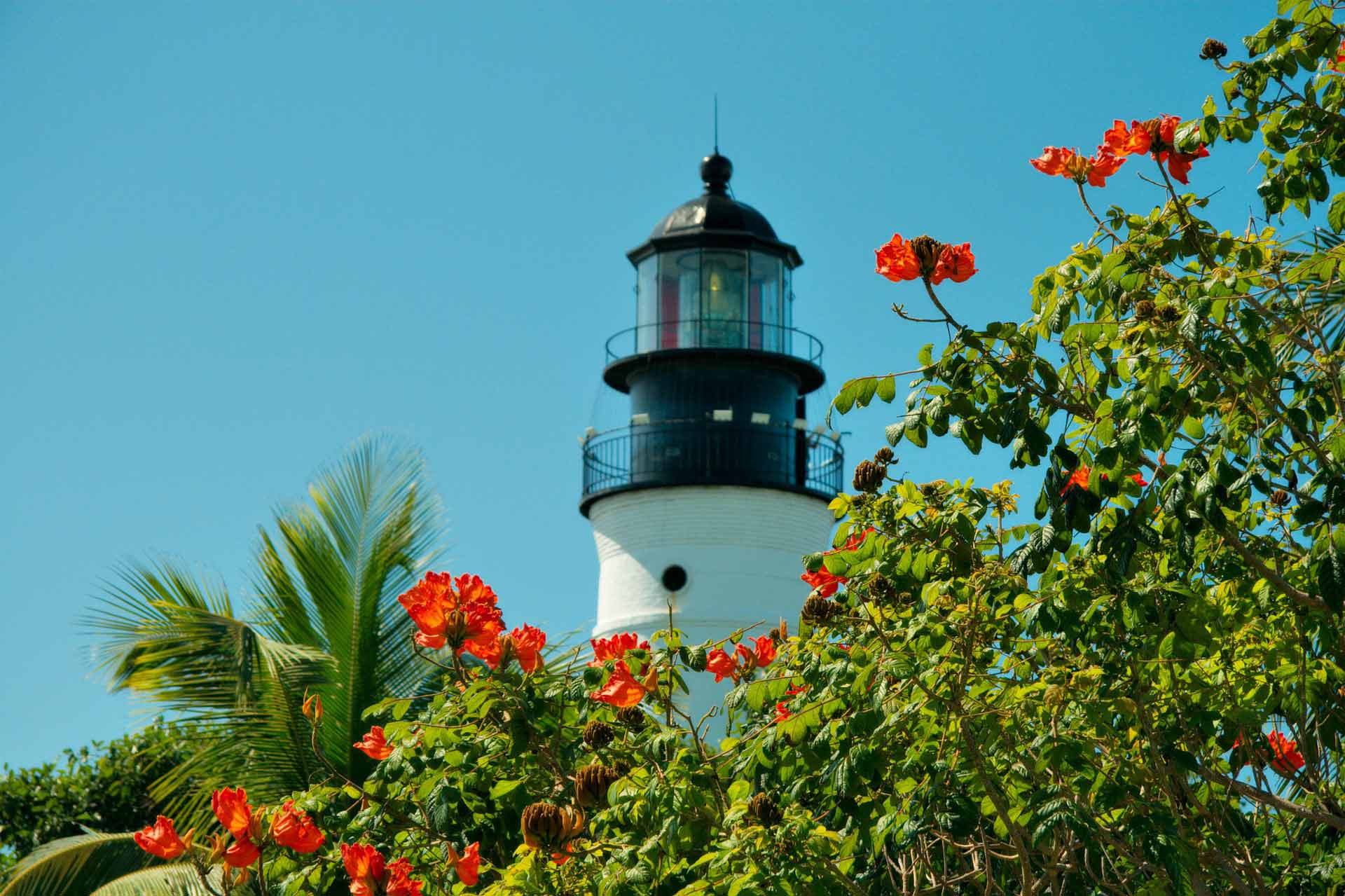 Picture of a lighthouse in Coral Gables with red flowers in the foreground