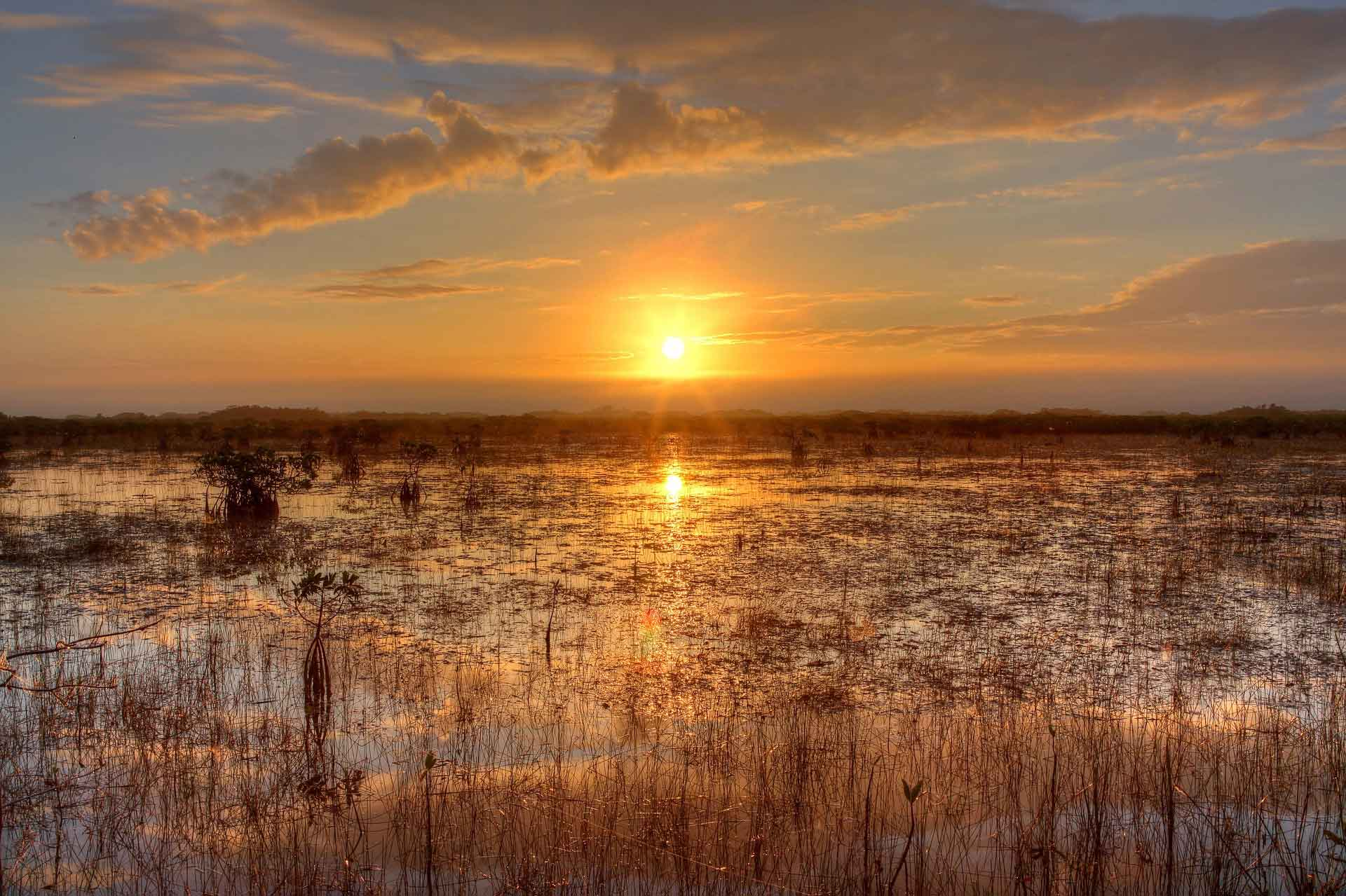landscape image of the sunset in the everglades.